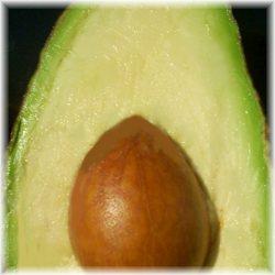 avocado beauty recipes