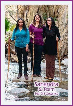 Sanandra and Team